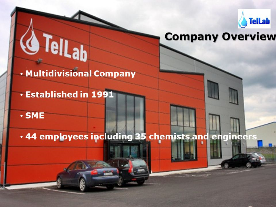 Company Overview Multidivisional Company Established in 1991 SME