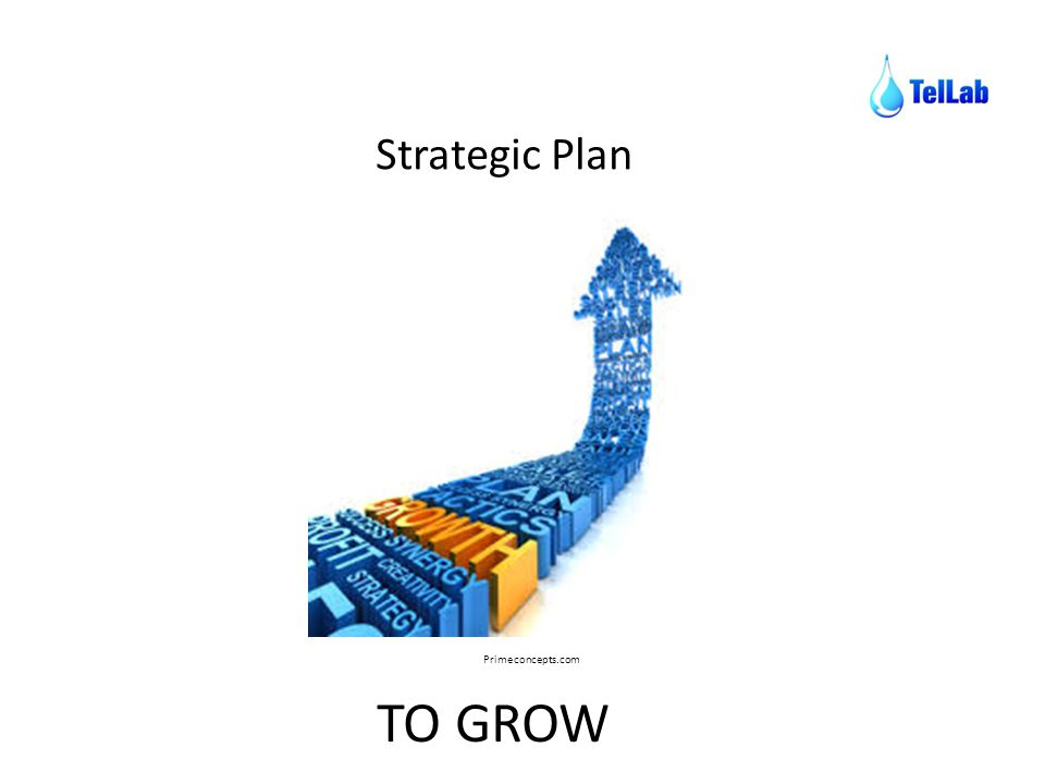 Strategic Plan Primeconcepts.com TO GROW
