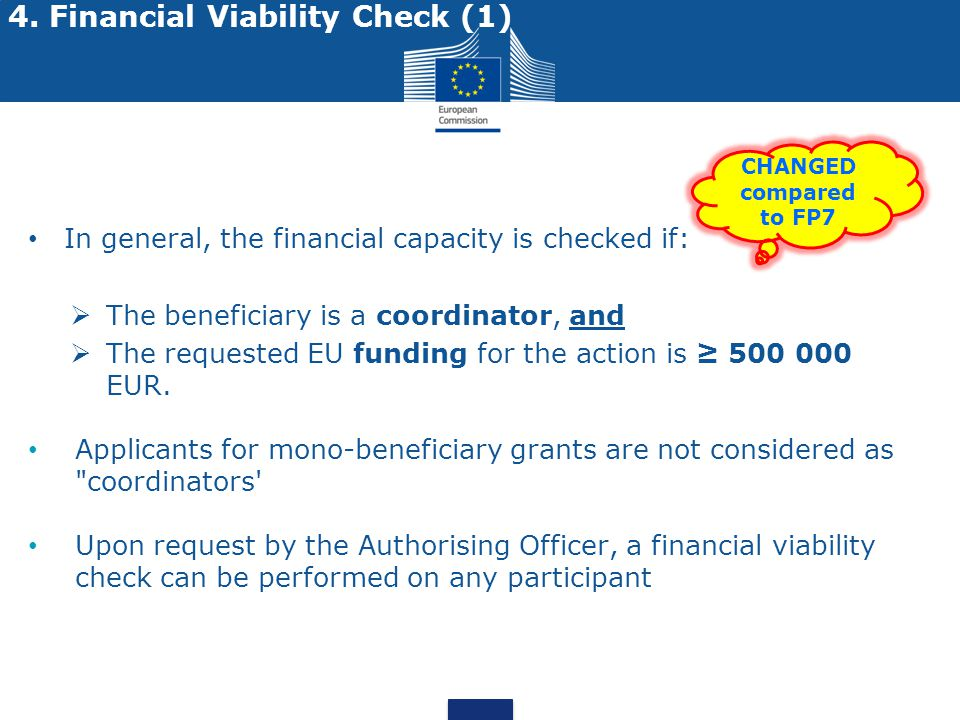 4. Financial Viability Check (1)