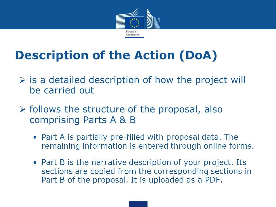 Description of the Action (DoA)