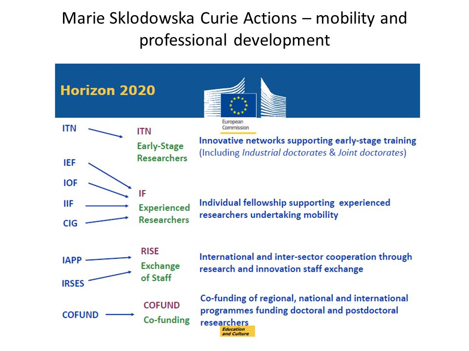 Marie Sklodowska Curie Actions – mobility and professional development