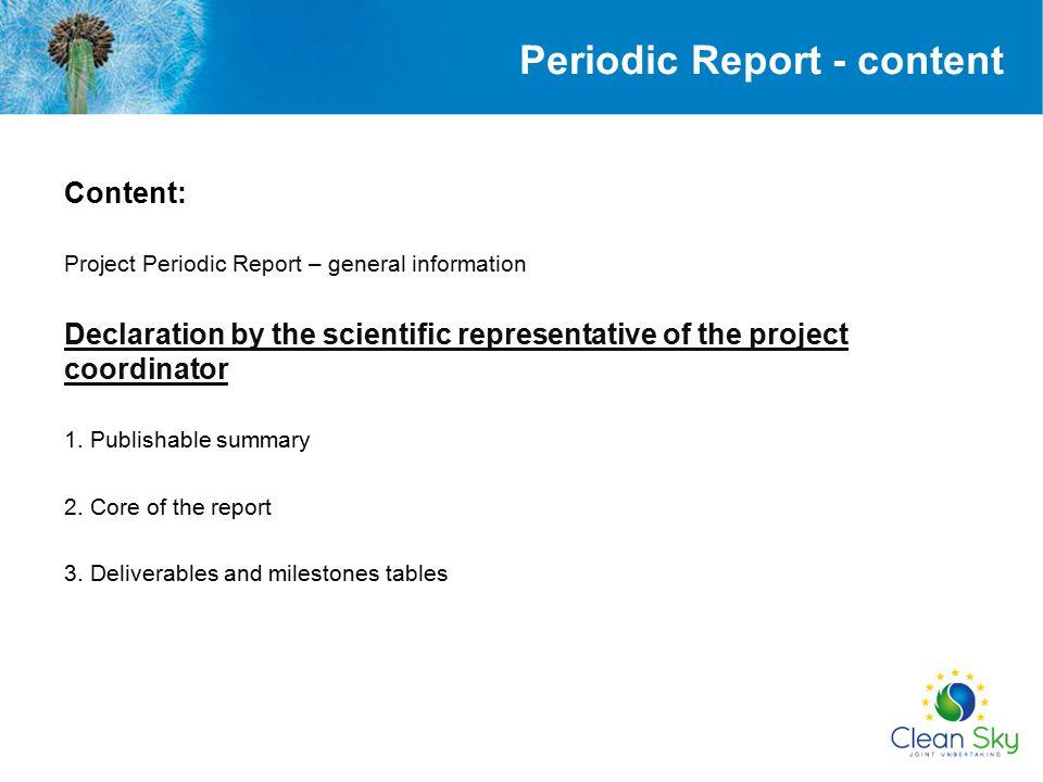 Periodic Report - content