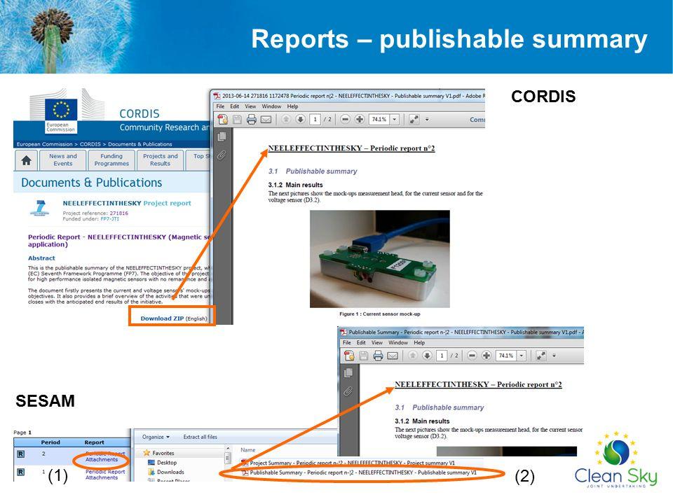 Reports – publishable summary