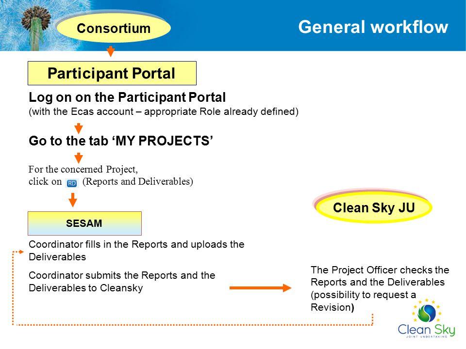 General workflow Participant Portal Consortium