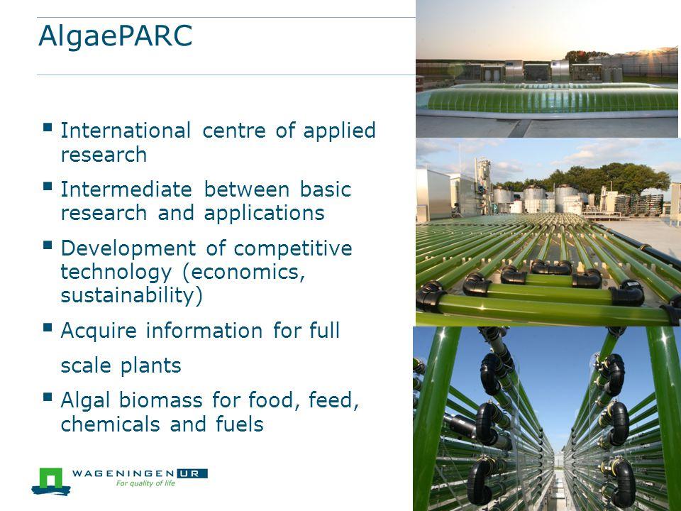 AlgaePARC International centre of applied research