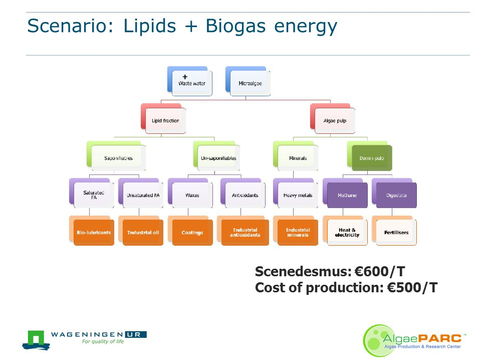 Scenario: Lipids + Biogas energy