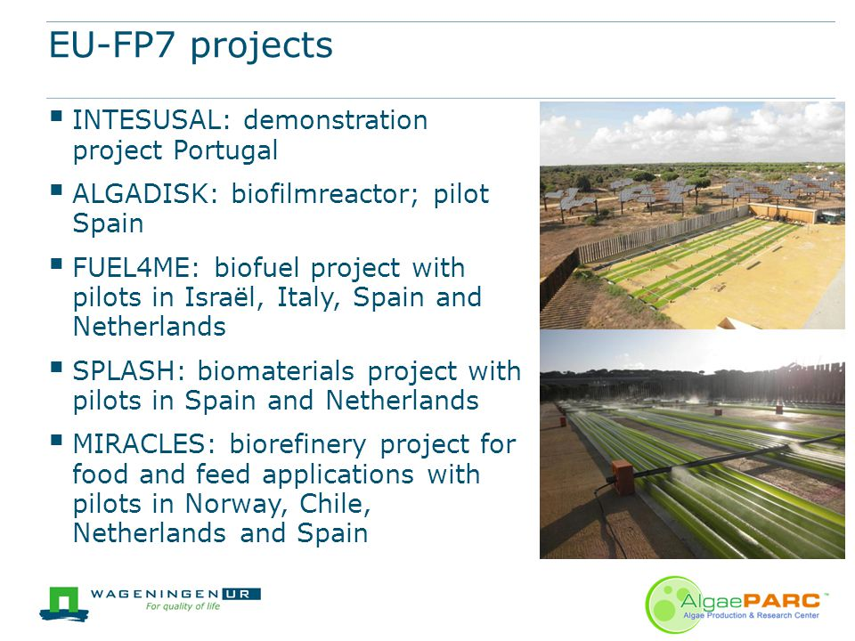 EU-FP7 projects INTESUSAL: demonstration project Portugal