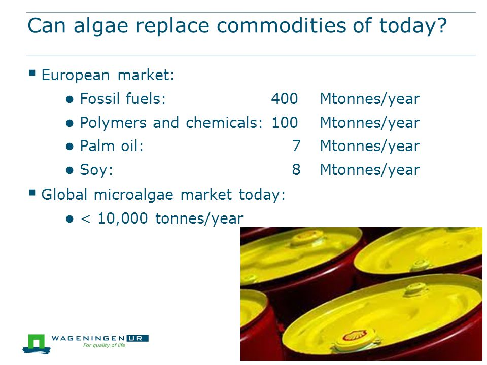 Can algae replace commodities of today