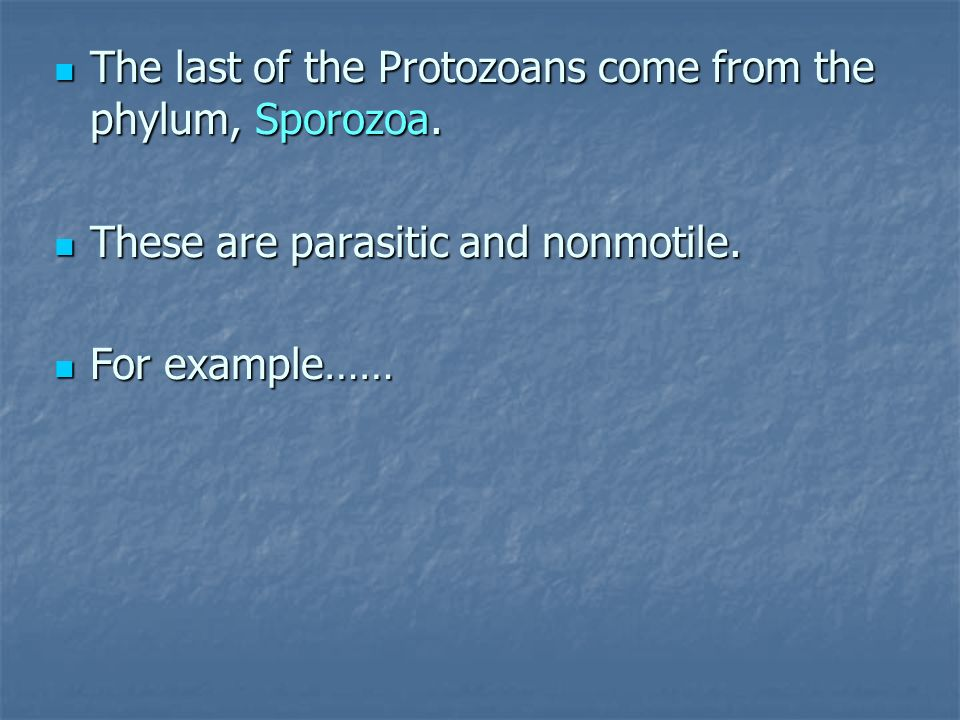 The last of the Protozoans come from the phylum, Sporozoa.