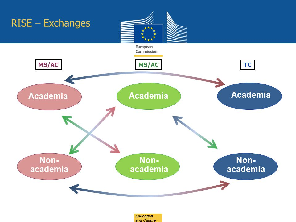 RISE – Exchanges Academia Academia Academia Non-academia Non-academia