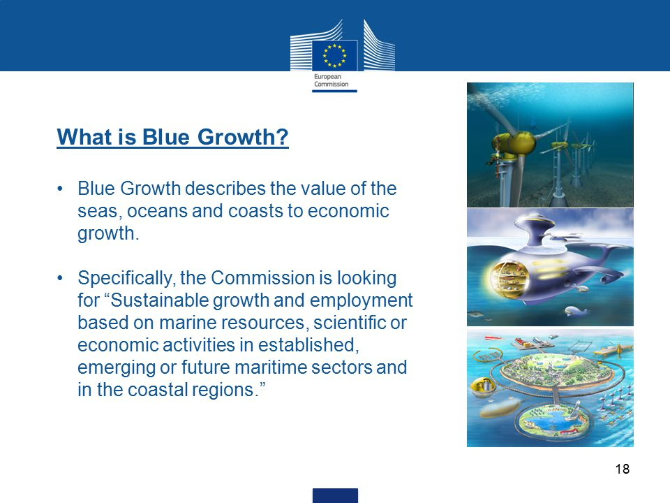 What is Blue Growth Blue Growth describes the value of the seas, oceans and coasts to economic growth.