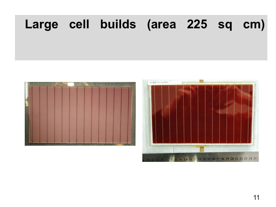 Large cell builds (area 225 sq cm)