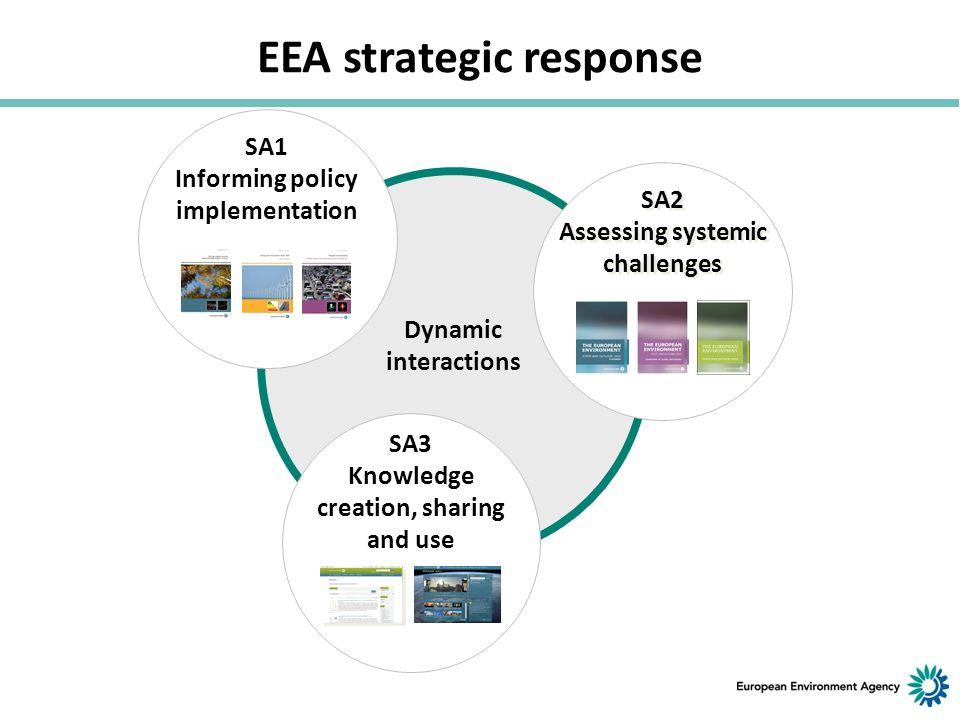 EEA strategic response