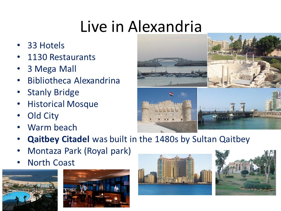 Live in Alexandria 33 Hotels 1130 Restaurants 3 Mega Mall