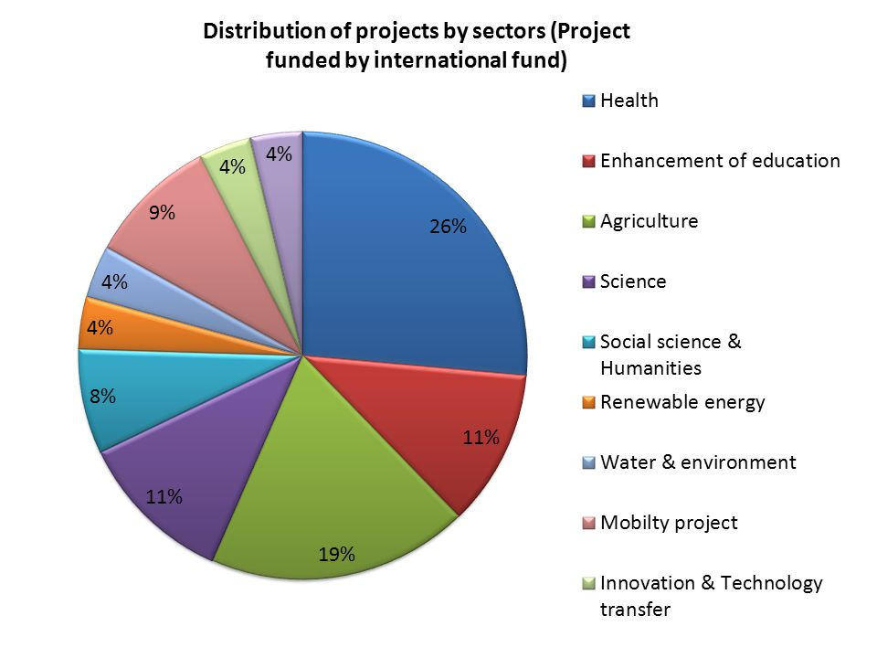 Distribution of projects by sectors (Project funded by international fund)