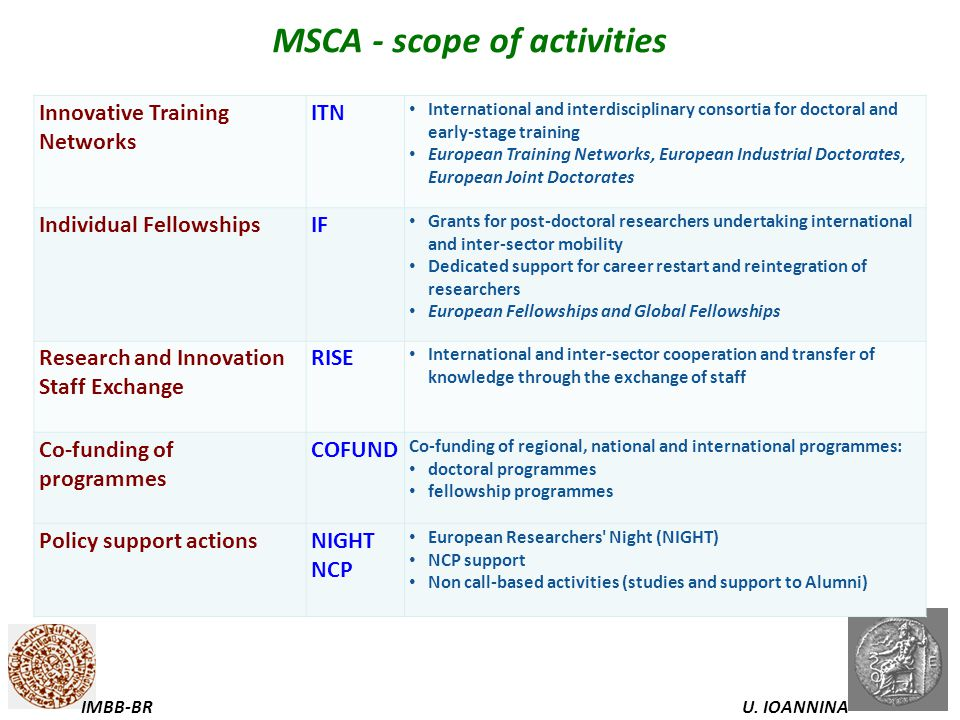 MSCA - scope of activities