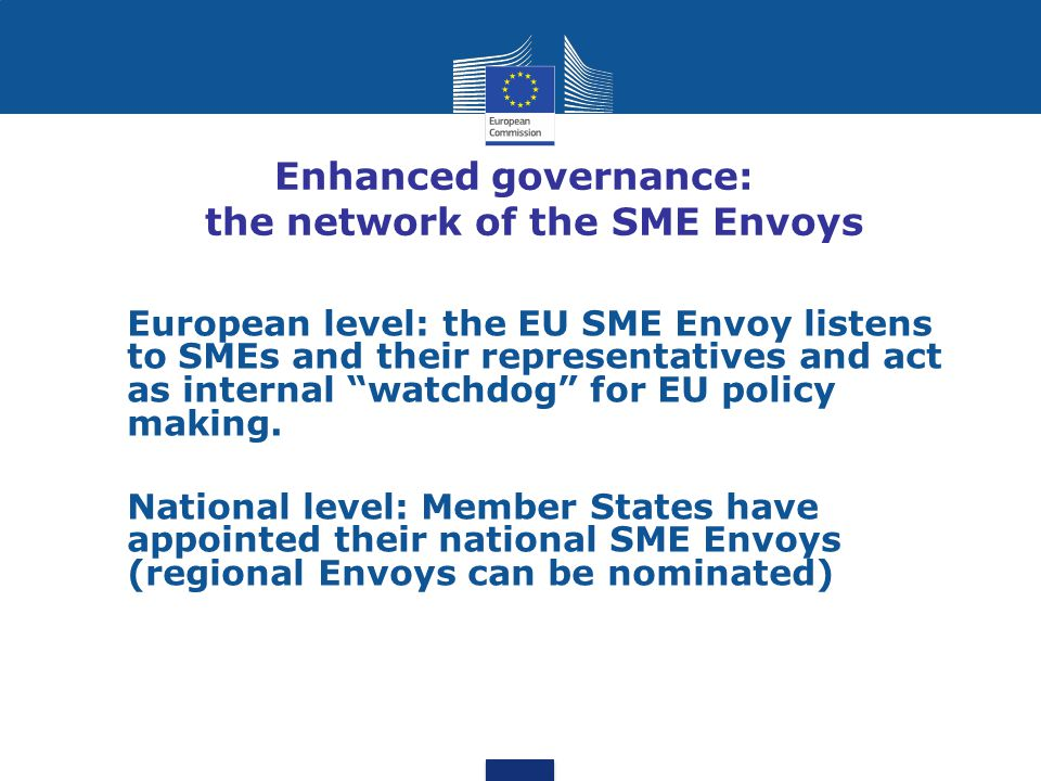 Enhanced governance: the network of the SME Envoys