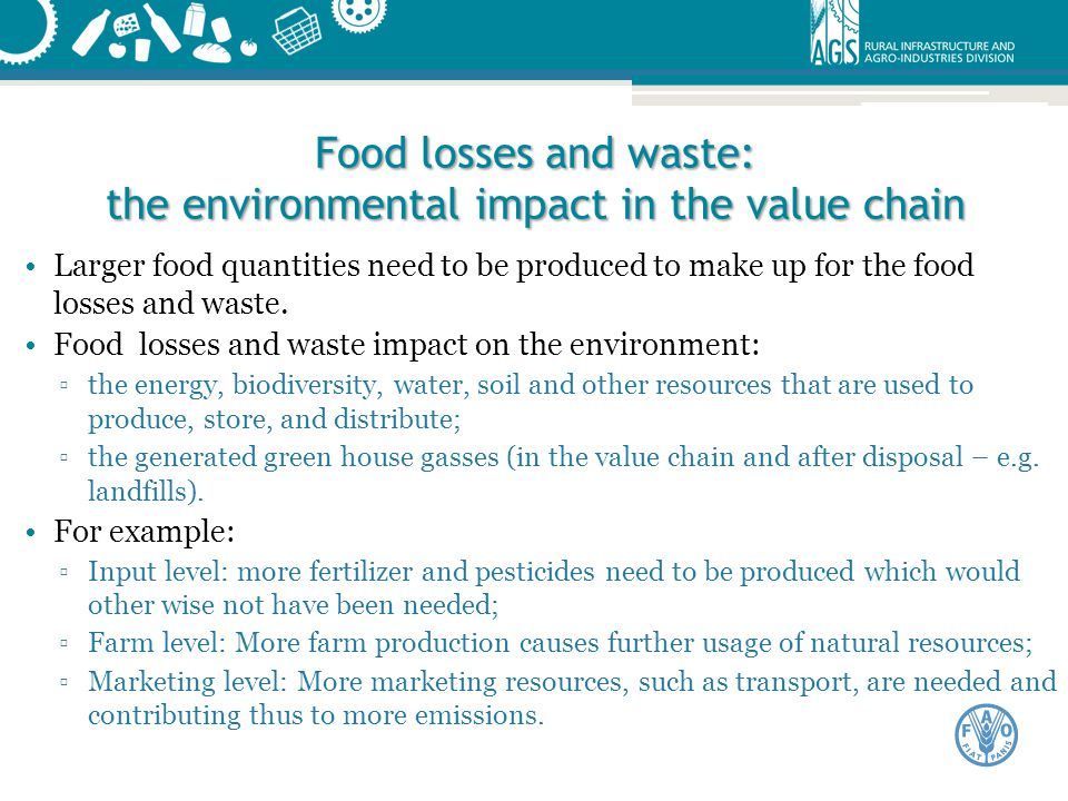 Food losses and waste: the environmental impact in the value chain