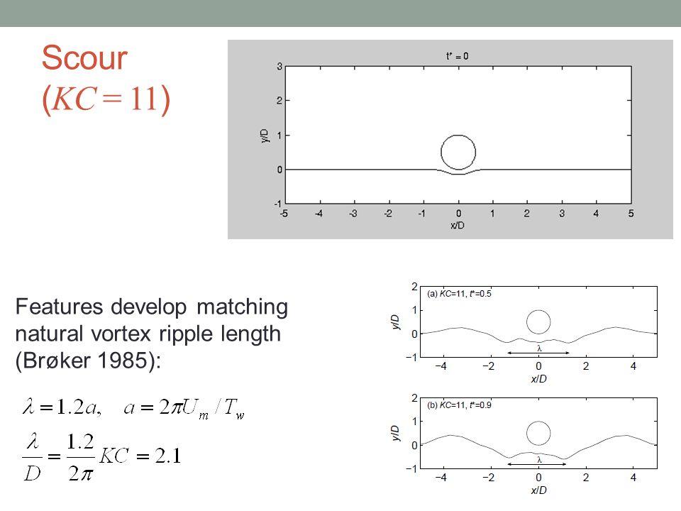 Scour (KC = 11) Features develop matching natural vortex ripple length (Brøker 1985):