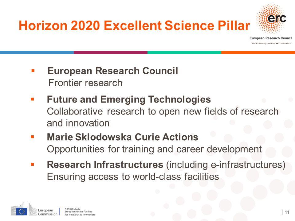 Horizon 2020 Excellent Science Pillar