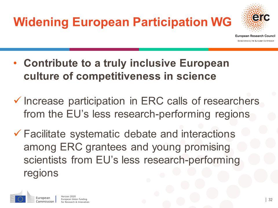 Widening European Participation WG