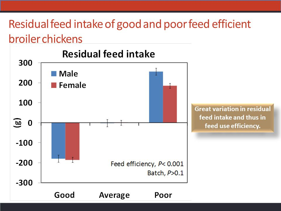 Residual feed intake of good and poor feed efficient broiler chickens