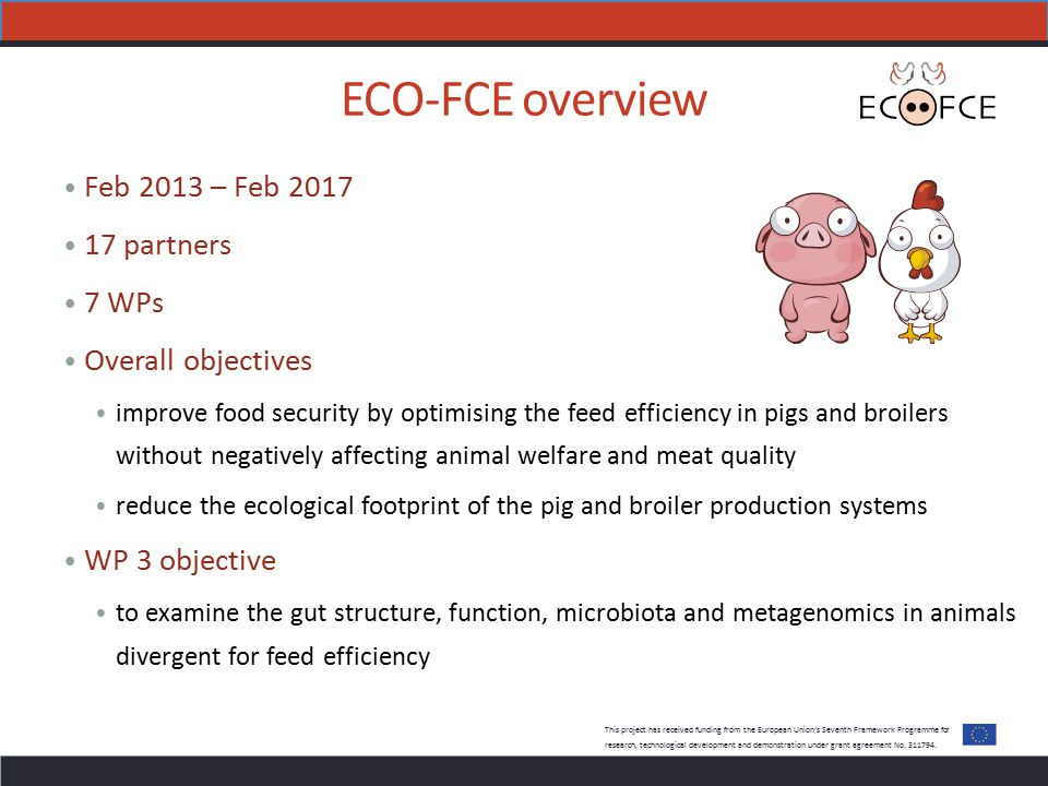 ECO-FCE overview Feb 2013 – Feb 2017 17 partners 7 WPs