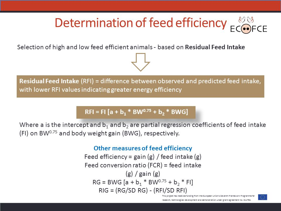 Determination of feed efficiency