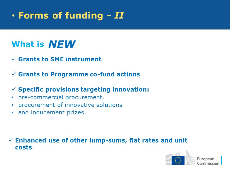 NEW Forms of funding - II What is Grants to SME instrument