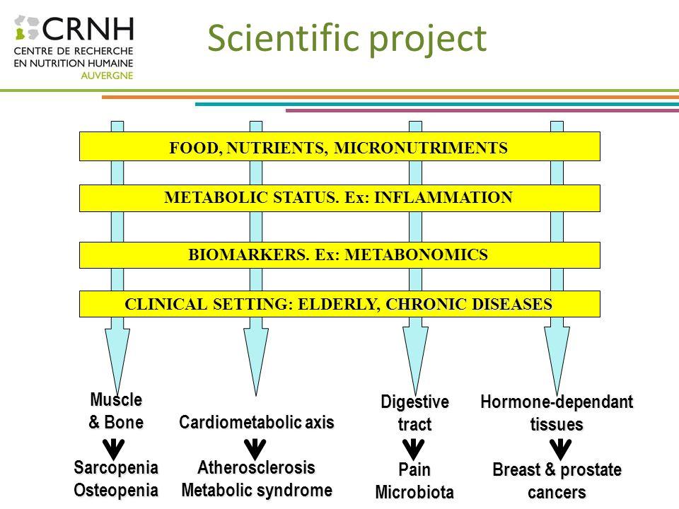 Scientific project Muscle & Bone Sarcopenia Osteopenia Digestive tract