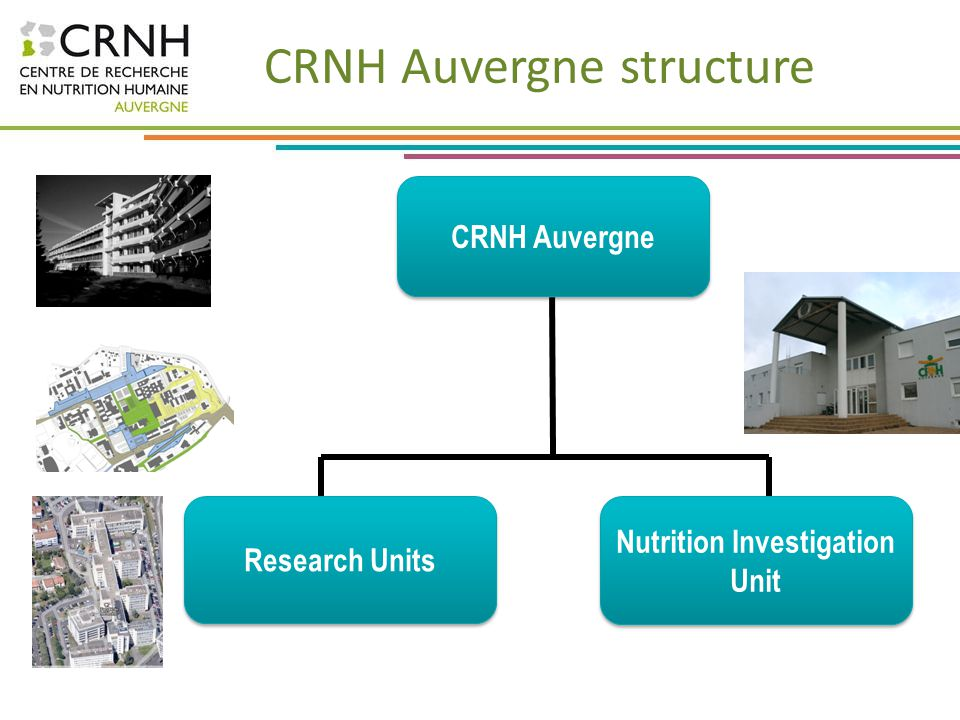 CRNH Auvergne structure