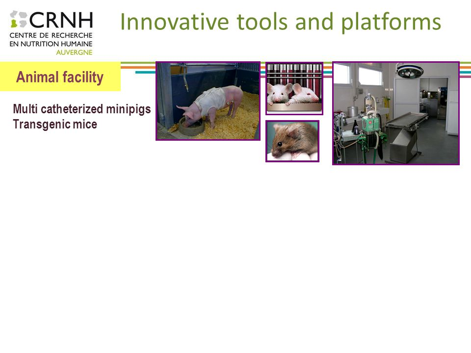 Innovative tools and platforms