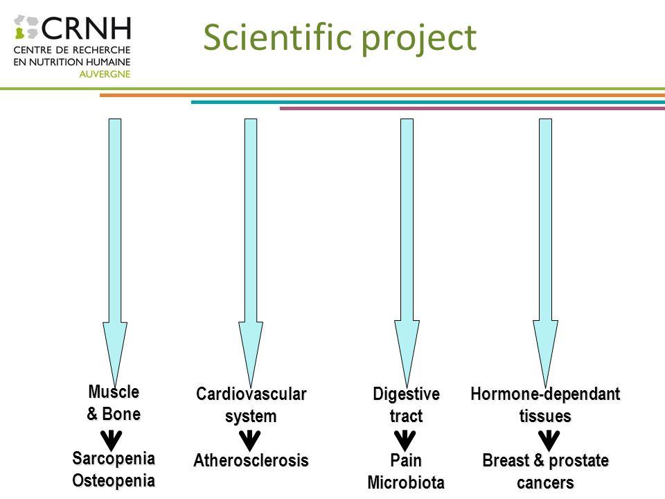 Scientific project Muscle & Bone Sarcopenia Osteopenia Cardiovascular