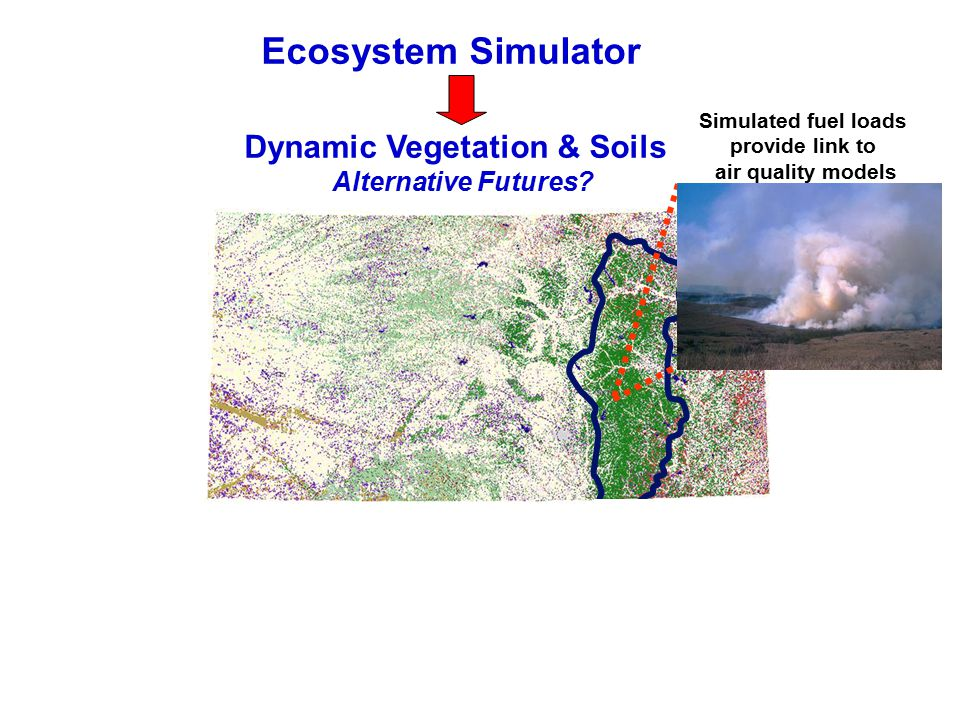 Dynamic Vegetation & Soils