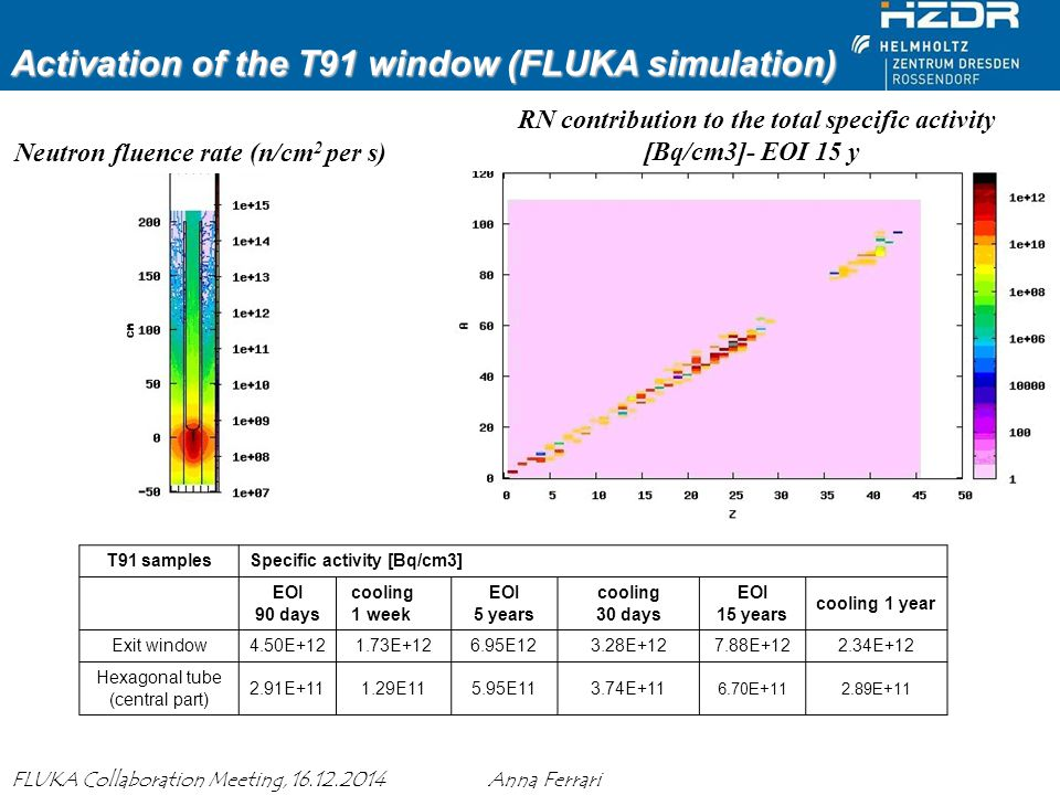 Activation of the T91 window (FLUKA simulation)