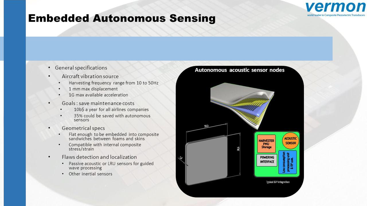 Embedded Autonomous Sensing
