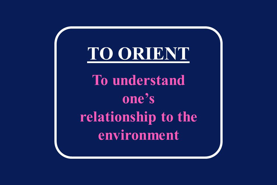 TO ORIENT To understand one's relationship to the environment