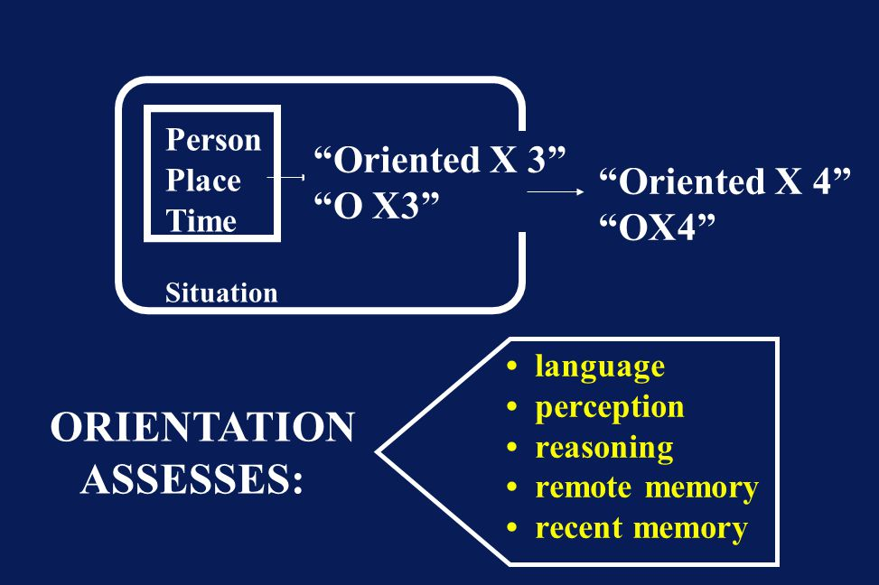ORIENTATION ASSESSES: Oriented X 3 O X3 Oriented X 4 OX4