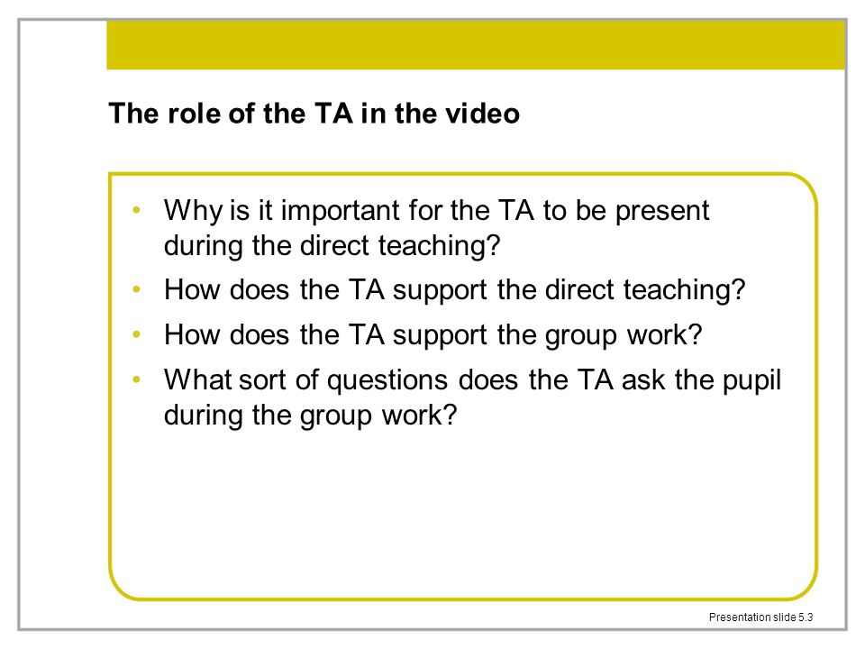 The role of the TA in the video