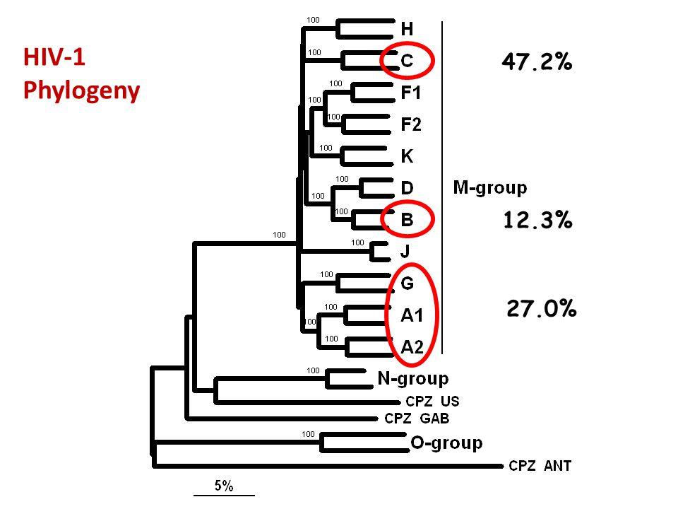 HIV-1 Phylogeny 47.2% 12.3% 27.0%