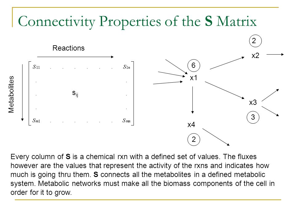 Connectivity Properties of the S Matrix