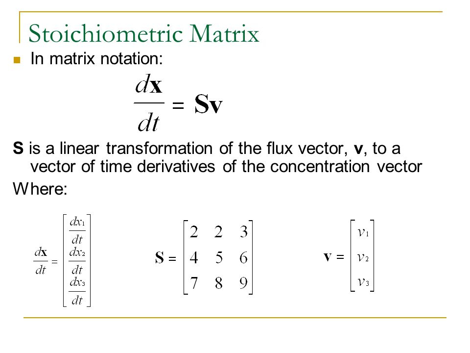 Stoichiometric Matrix