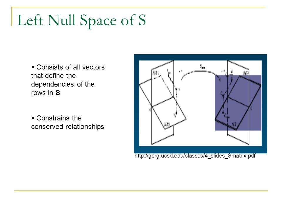 Left Null Space of S Consists of all vectors that define the dependencies of the rows in S. Constrains the conserved relationships.