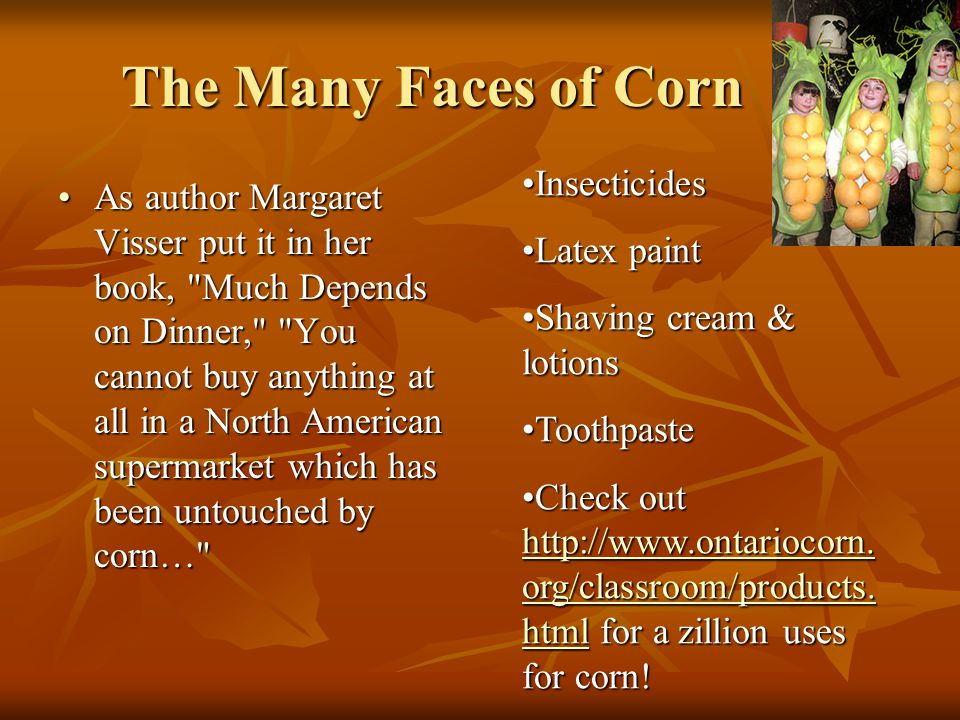The Many Faces of Corn Insecticides