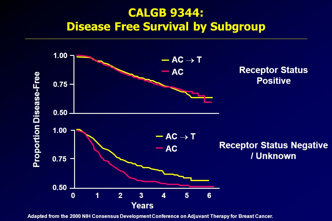 CALGB 9344: Disease Free Survival by Subgroup