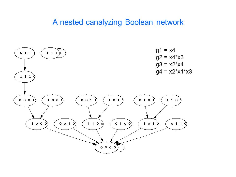 A nested canalyzing Boolean network