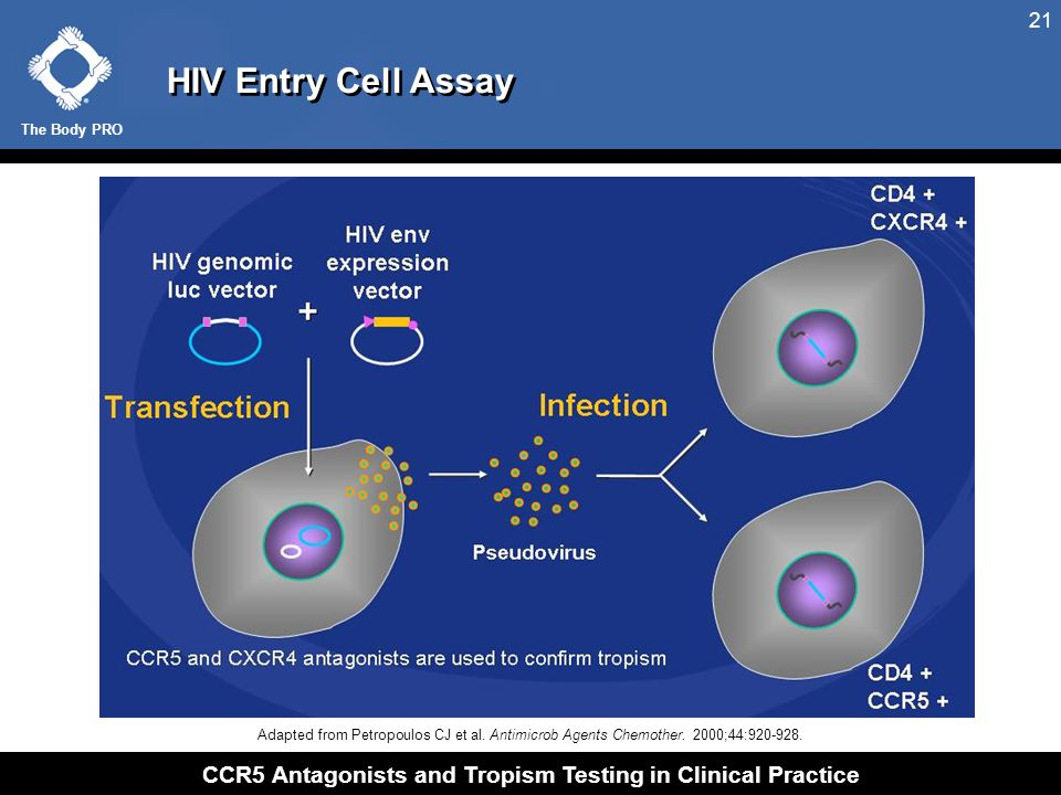 HIV Entry Cell Assay: R5 HIV Only