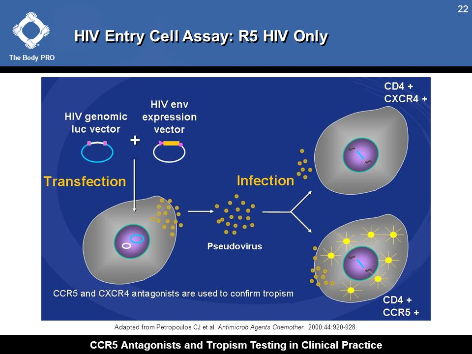 HIV Entry Cell Assay: X4 HIV Only