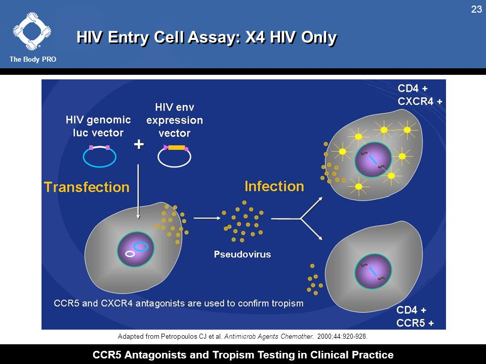 HIV Entry Cell Assay: R5/X4 Tropic HIV