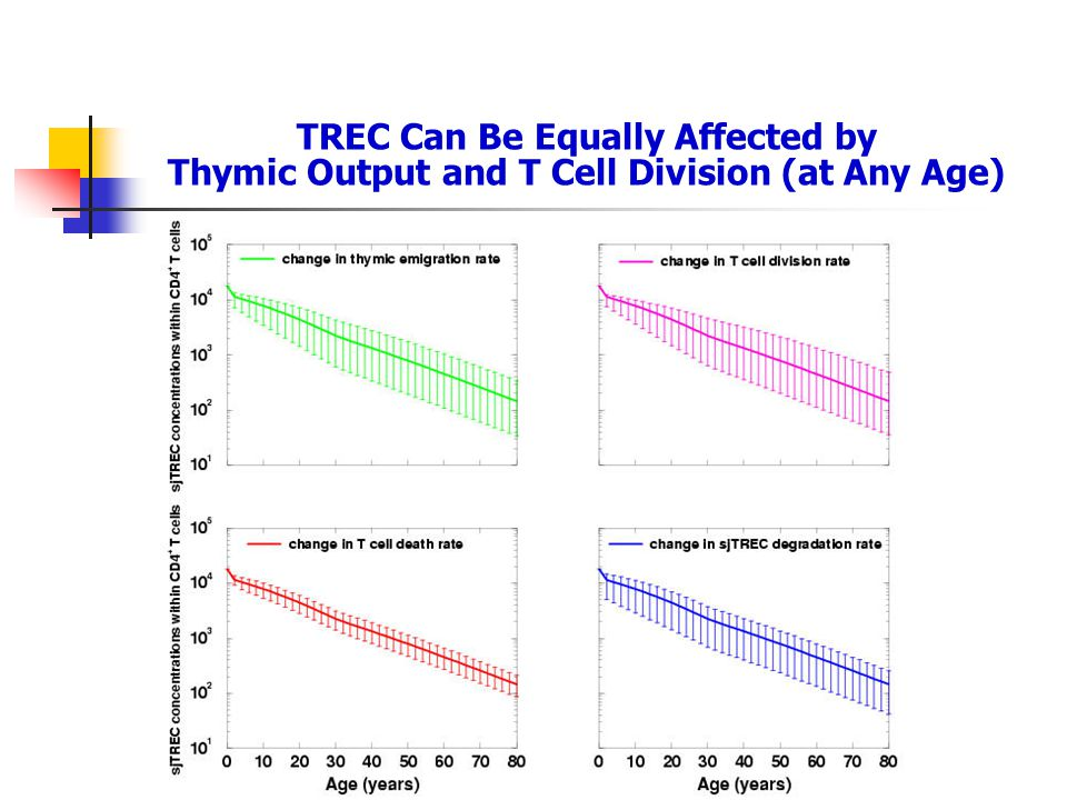 TREC Can Be Equally Affected by Thymic Output and T Cell Division (at Any Age)
